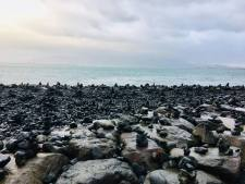 Reykjavik Coastline