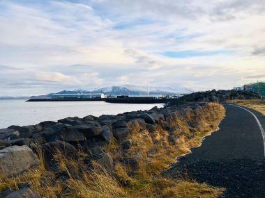Reykjavik Scenery